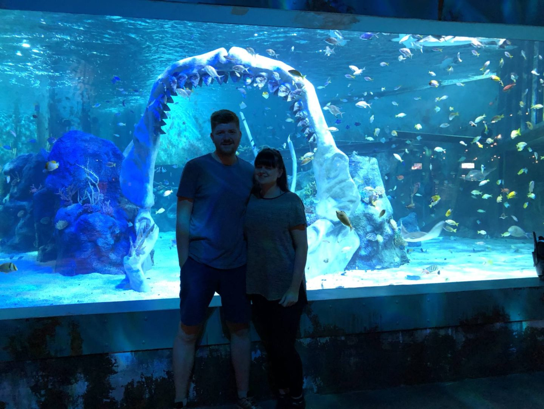 Bear Grylls Nec Adventure Shark Tank