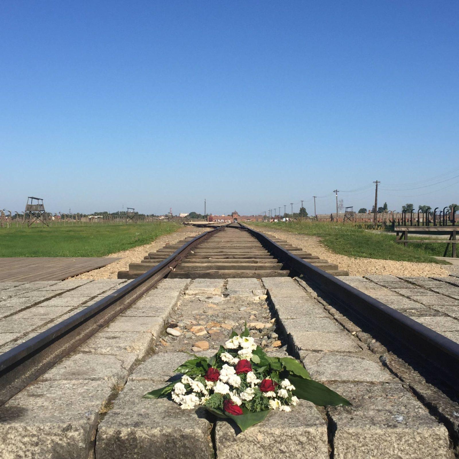 Emma Victoria Stokes Krakow Auschwitz Birkenau