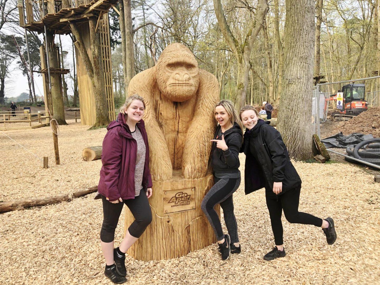 Go Ape Coventry Gorilla