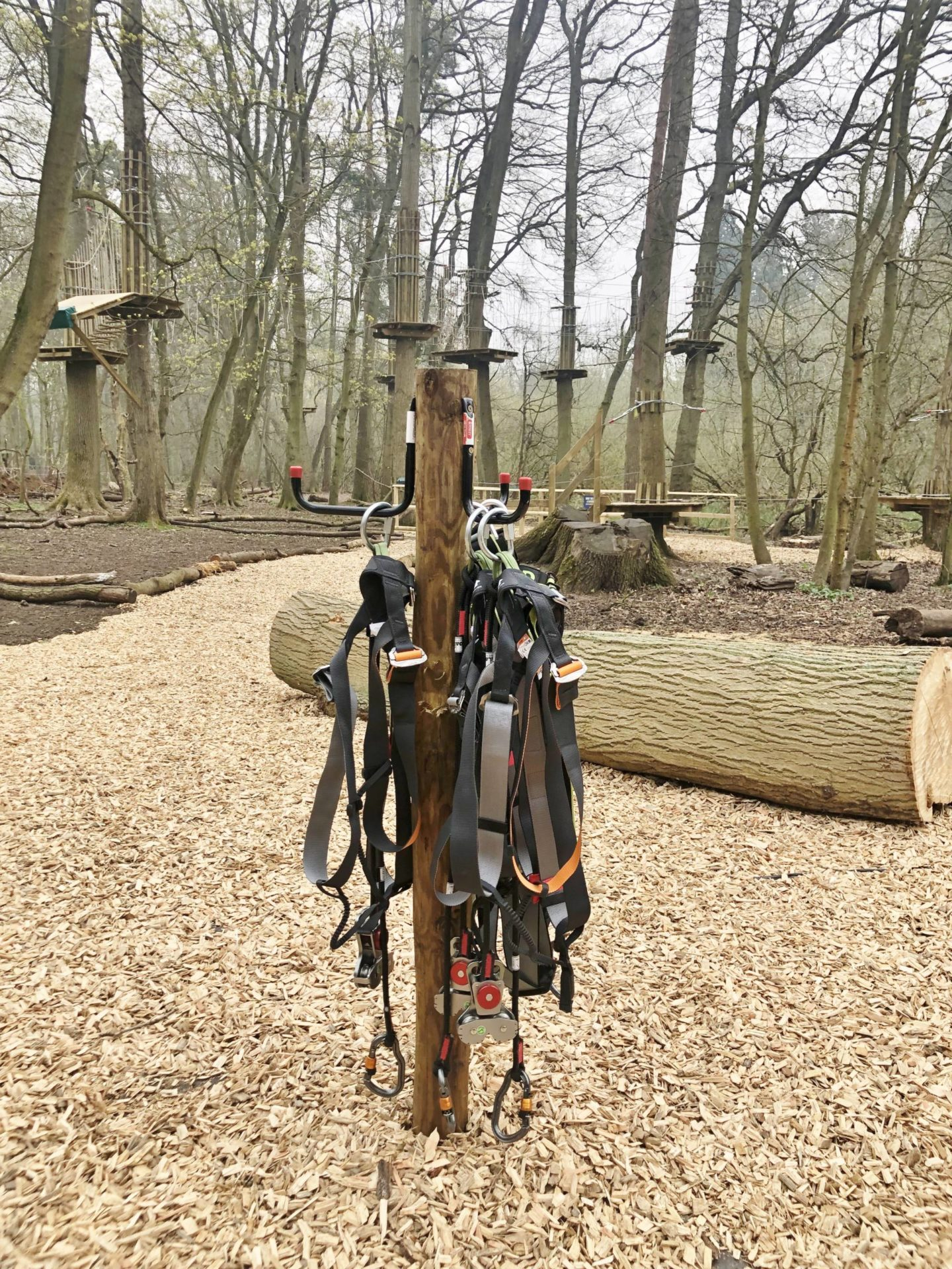 Go Ape Harnesses on wooden pole