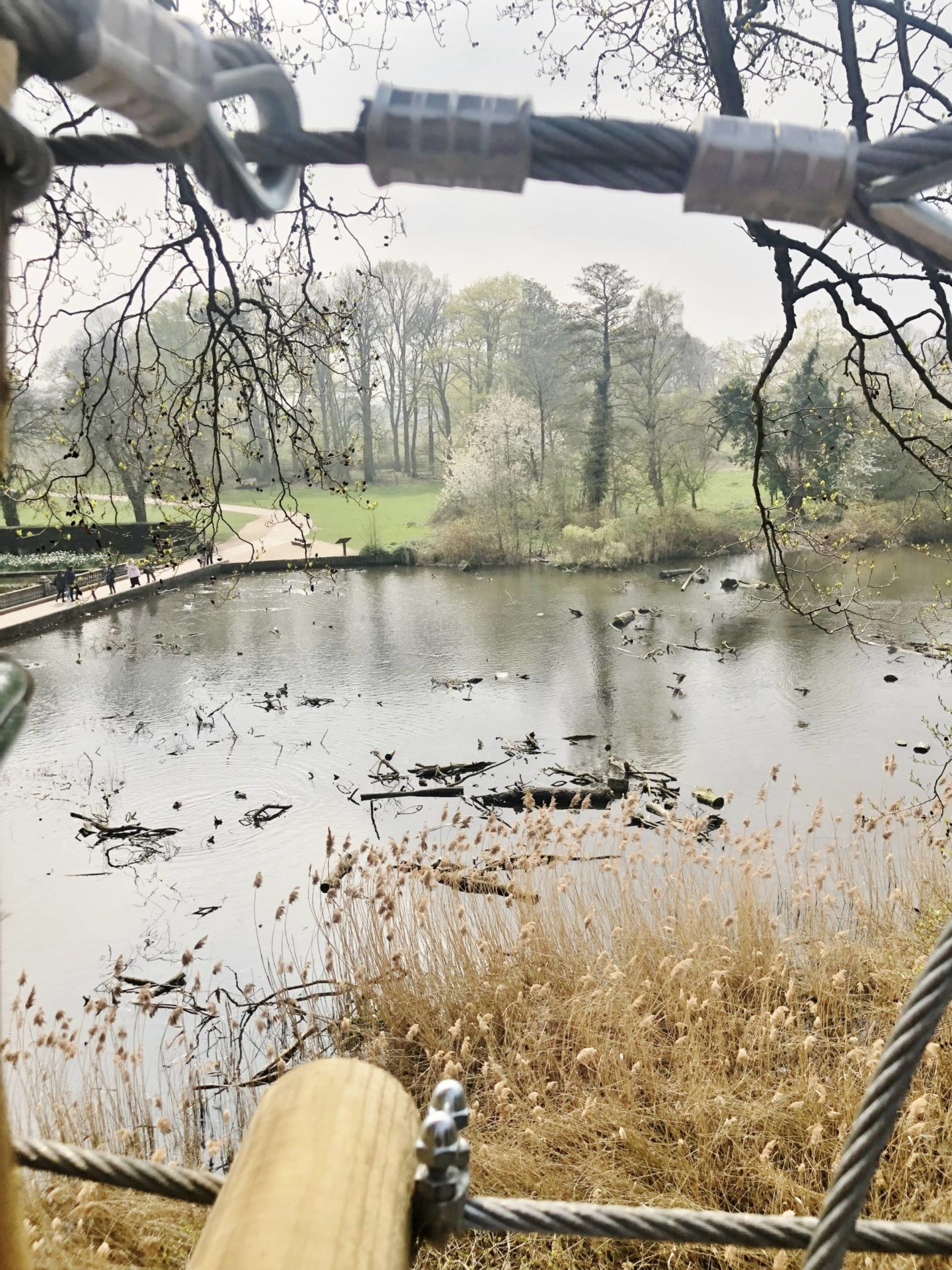 Go Ape Coventry Lake
